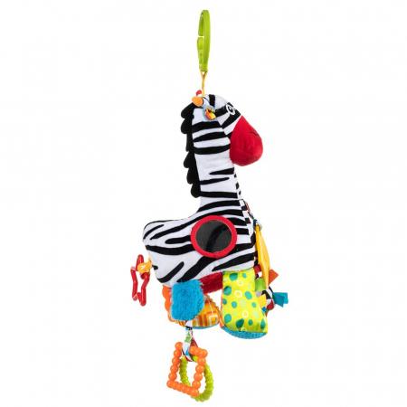 Zebra Zoya, 0 luni +5