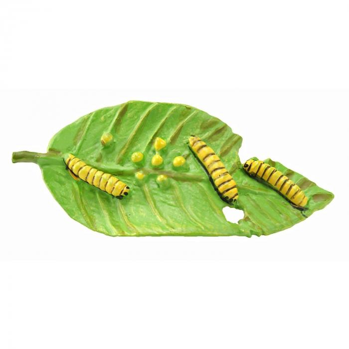 Ciclul de viata Fluturele Monarh - Set 4 figurine 1