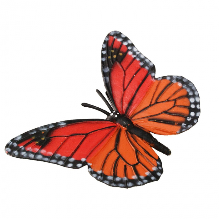 Ciclul de viata Fluturele Monarh - Set 4 figurine 7