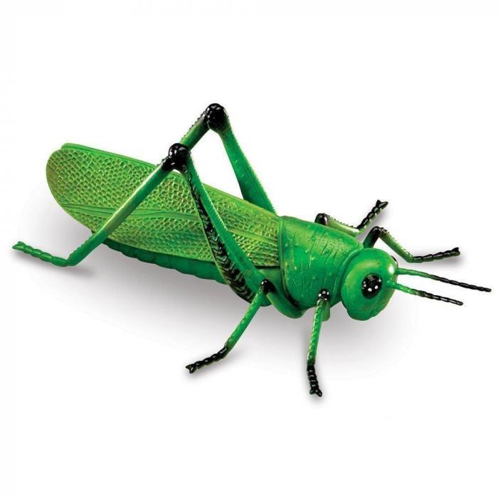 Set insecte - figurine mari pentru bebelusi 7