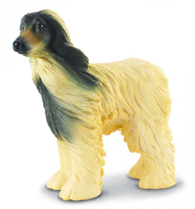Caine Afghan - Animal figurina 0