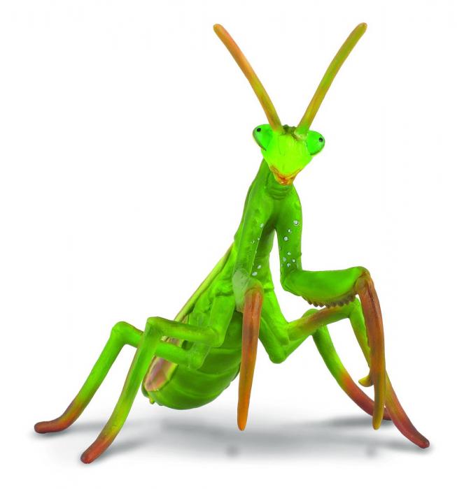 Calugarita - Animal figurina 0