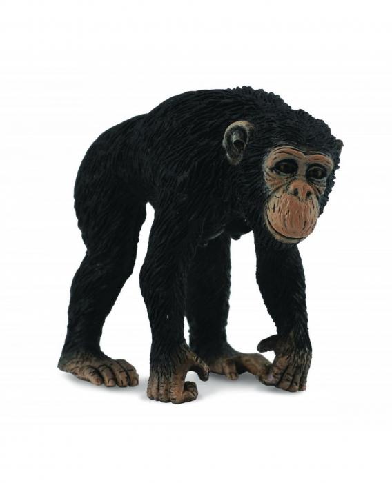 Cimpanzeu Femela - Animal figurina 0