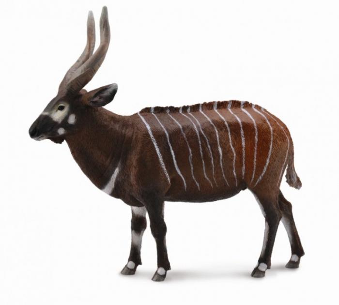Antilopa Bongo XL - Animal figurina 0