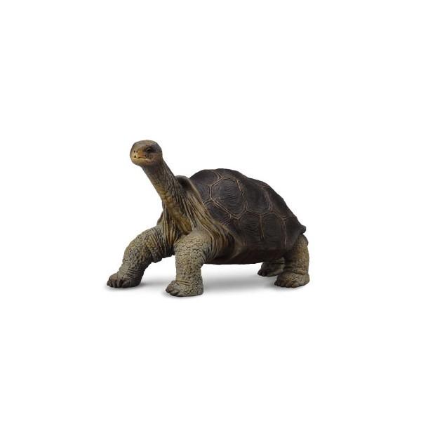 Broasca Testoasa din Pinta Island M - Animal figurina [0]