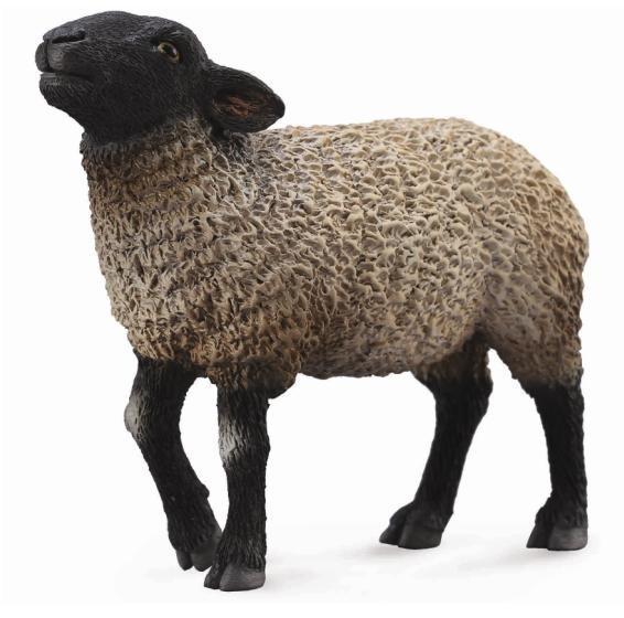 Oaie Suffolk M - Animal figurina 0