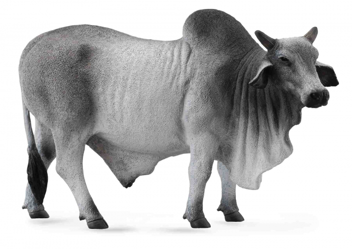 Taur Brahman L - Animal figurina 0
