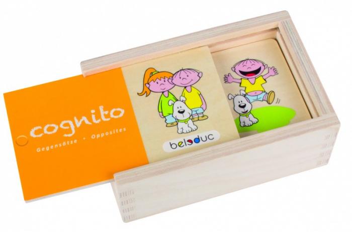 Joc Puzzle Cognito Antonime 4