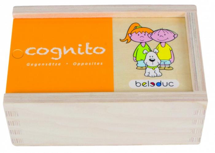 Joc Puzzle Cognito Antonime 0