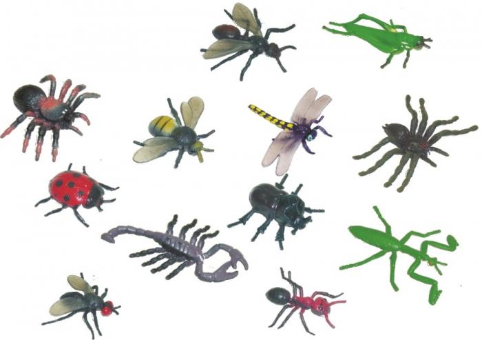 Pachet de studiu insecte: Set insecte + lupa speciala 0
