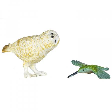 Pasari exotice - Safari Toob - Set 11 figurine6