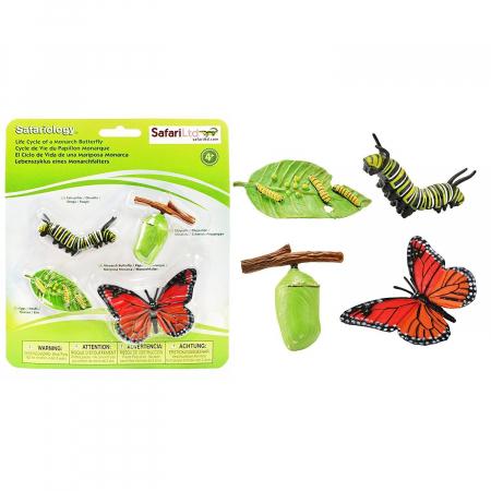 Ciclul de viata Fluturele Monarh - Set 4 figurine4