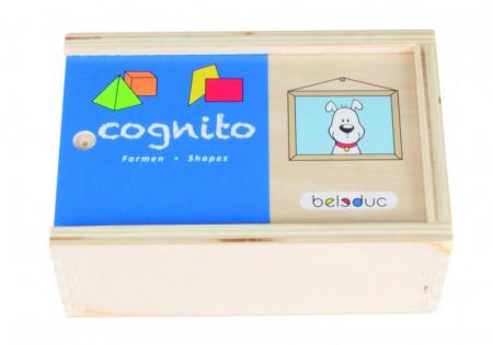 Cognito - Set de lemn pentru invatare forme si culori1