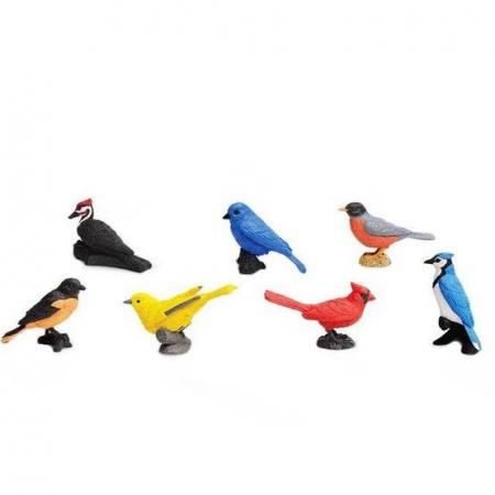 Rase pasari - Safari Toob - Set 7 figurine