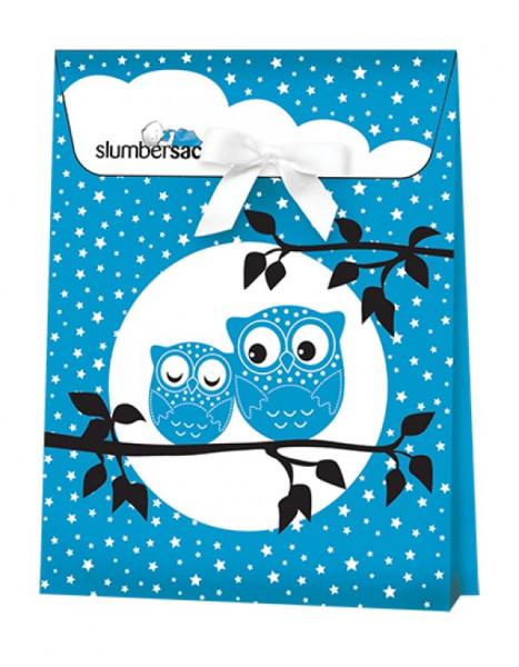 Ambalaj cadou Blue Owls 0