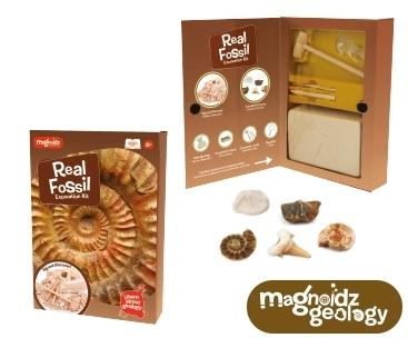 Kit paleontologie - Descopera fosile 0