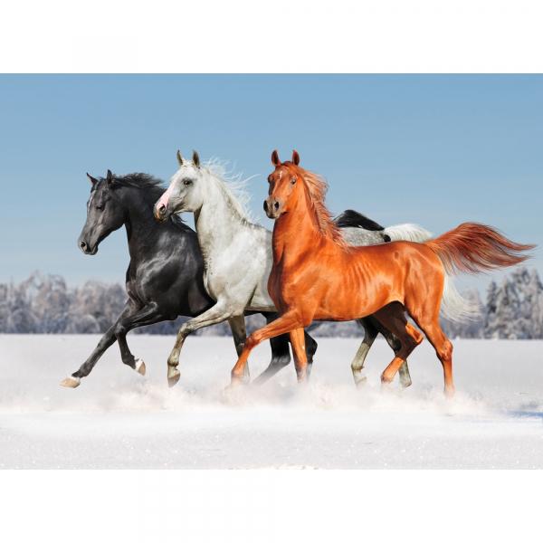Proiector cai si ponei Brainstorm Toys E2022 [4]