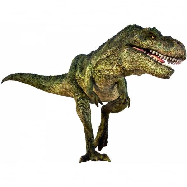 Proiector dinozauri  Brainstorm Toys E2029N [1]