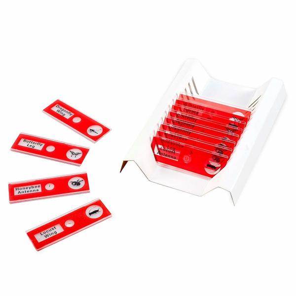 Set diapozitive pentru microscop 3