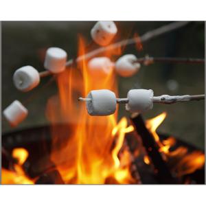 Aventuri in aer liber – Proiector si lampa de veghe pentru Camping Brainstorm Toys E20607