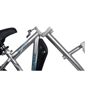 Bicicleta Co-Pilot WeeRide WR064