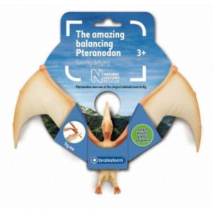Incredibilul Pteranodon Natural History Museum N51500