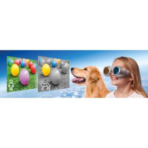 Priveste lumea cu alti ochi Brainstorm Toys E2064 [9]