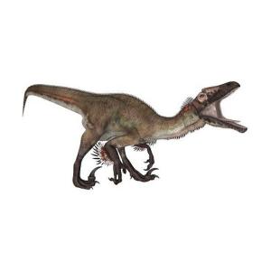 Proiector cu Dinozauri si Lampa de Veghe Brainstorm Toys E20462