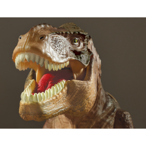 T Rex Proiector si Paznic Brainstorm Toys E2028 [5]