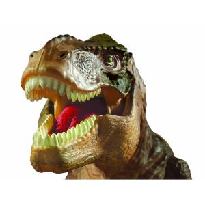 T Rex Proiector si Paznic Brainstorm Toys E2028 [4]