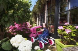 Kart BERG Buzzy Bloom [7]