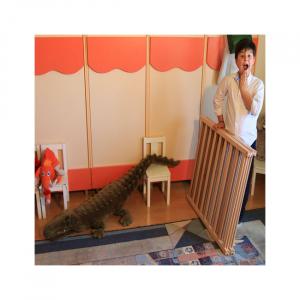 Tarc copii pliabil din lemn - Mesterel5