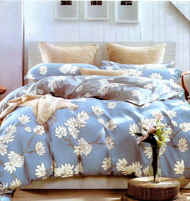 Lenjerie de pat albastra cu model