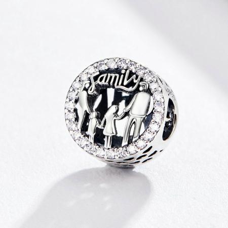 Talisman argint cu zirconii albe si desen cu mesaj Family [1]