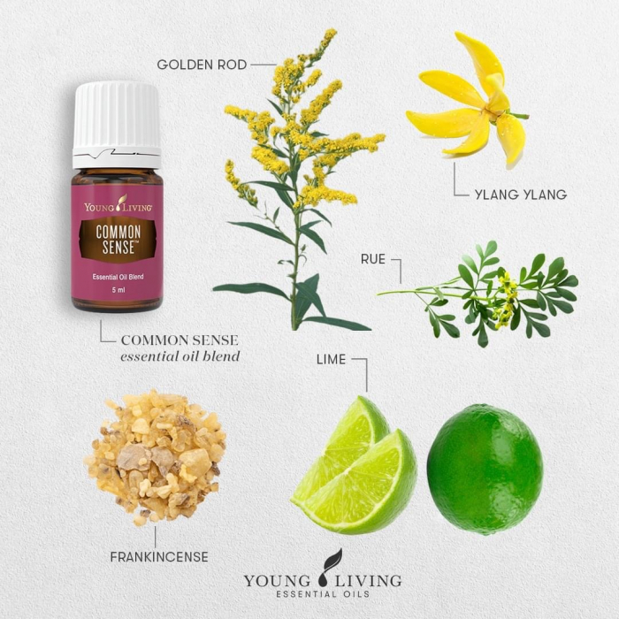 Common Sense Essential Oil Blend - Ulei esențial amestec Common Sense [1]