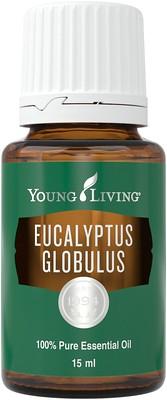 Ulei Esential Eucalyptus Globulus - Ulei Esential Eucalipt Globulus [0]