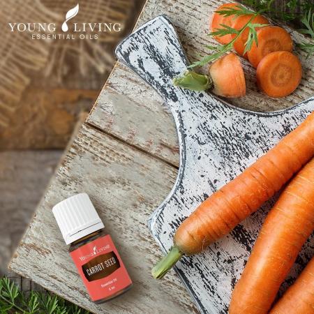 Ulei Esential Carrot Seed - Ulei Esential din Seminte de Morcov [1]