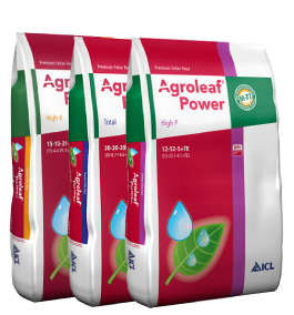 Agroleaf Power Mg 10+05+10+16MgO+32S+ME 15 KG 0