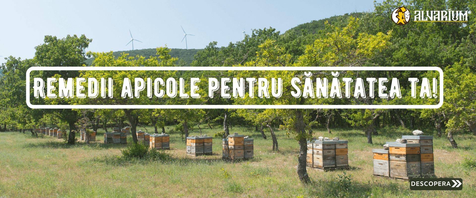 Renedii apicole pentru sanatatea ta!