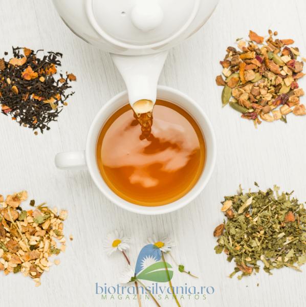 Ceai BIO Sprijin Imunitar 17 pliculete, 34g Yogi Tea 1