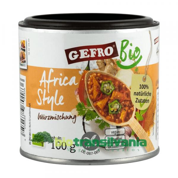 Condiment BIO Africa Style 100g Gefro 0