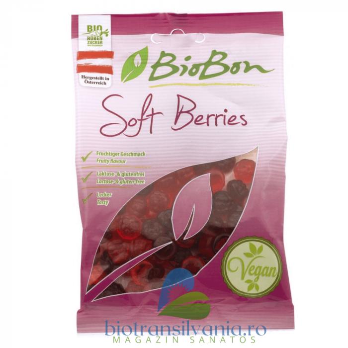 Jeleuri BIO cu Fructe de Padure, 100g BioBon [0]