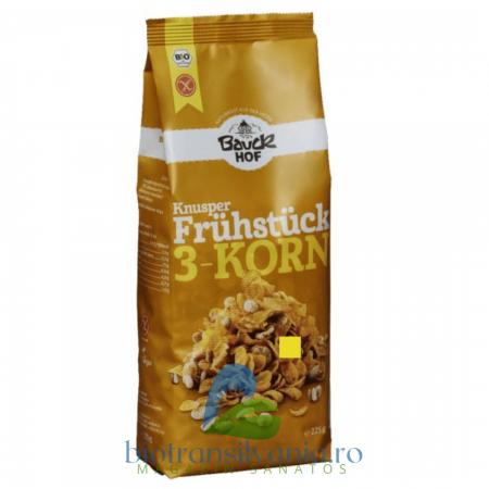 Cereale Crocante Fara Gluten 225 g Bauck Hoof