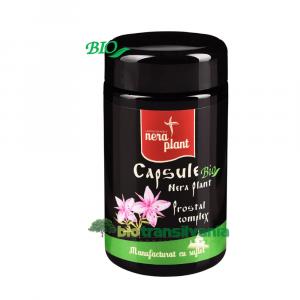 Capsule Prostal Complex BIO Nera Plant