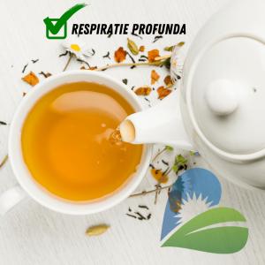 Ceai BIO respiratie profunda, 30.6GR Yogi Tea1