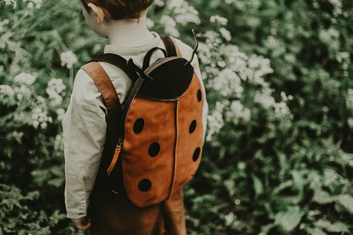 Benjie Schoolbag Lady bird 3