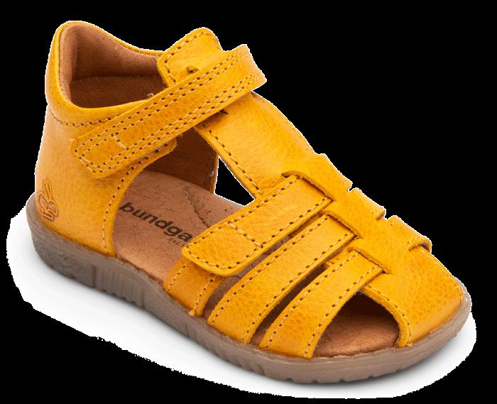 Rox Yellow 1