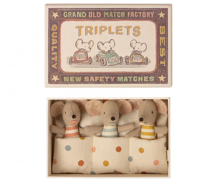 Triplets, Baby mice in matchbox [0]
