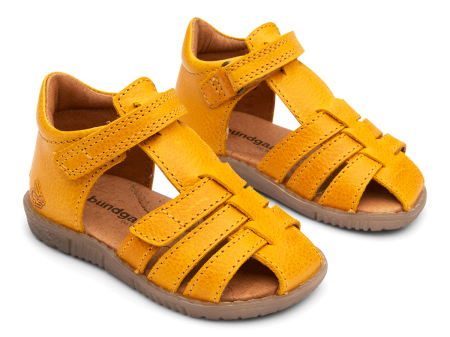 Rox Yellow0
