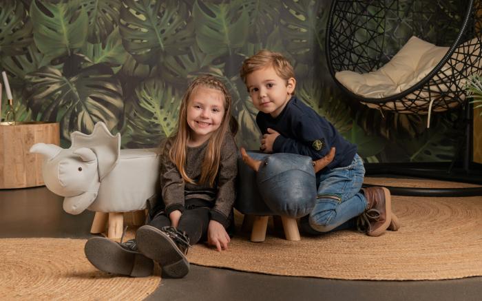 Taburet copii Rinocer 3